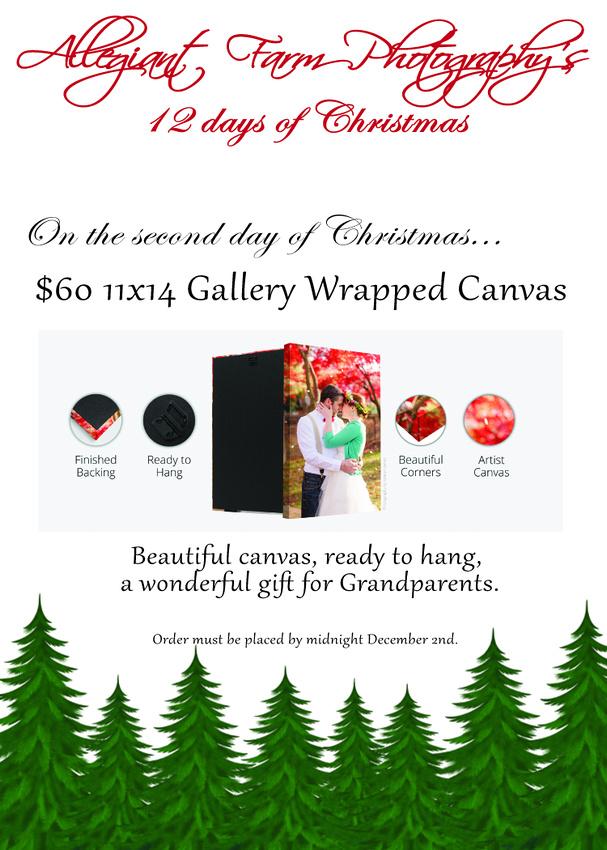 12 days of christmas specials-02