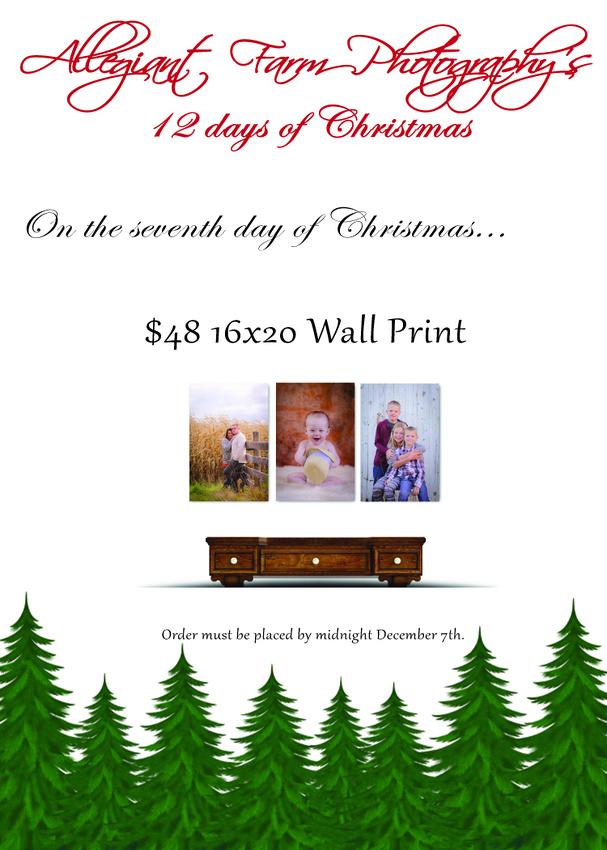12 days of christmas specials-07