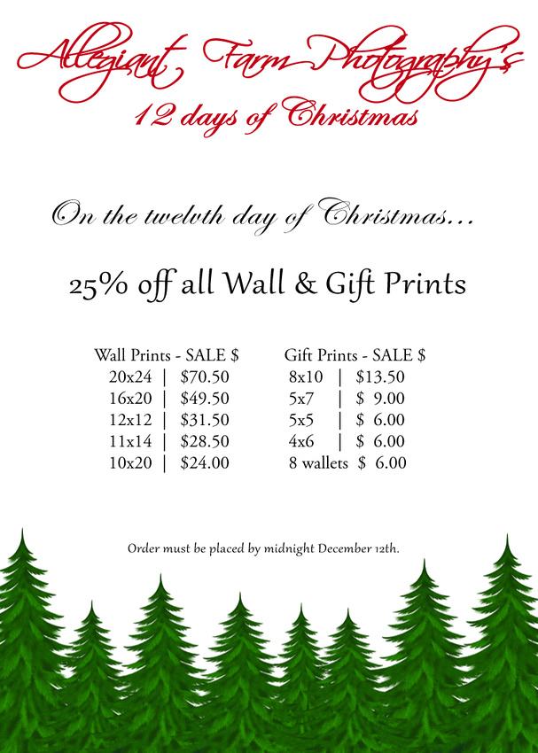 12 days of christmas specials-12