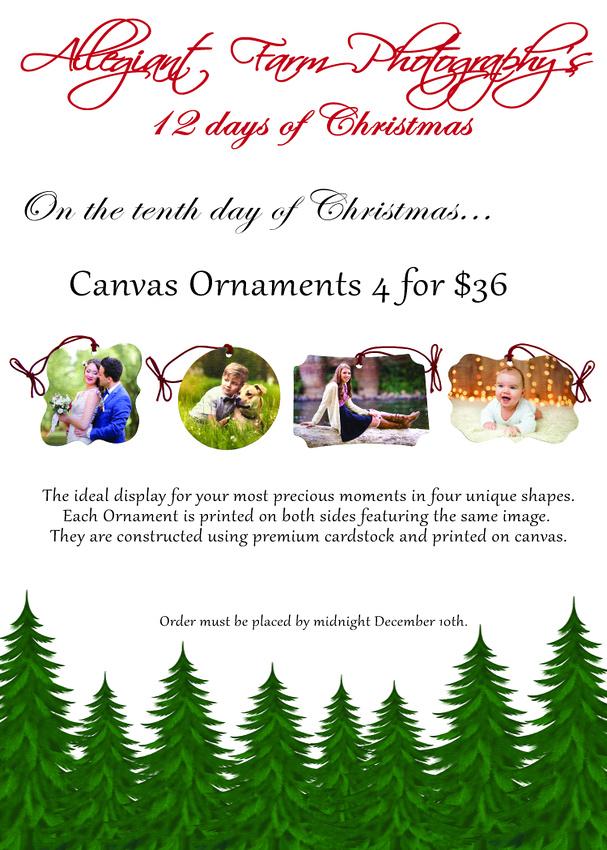 12 days of christmas specials-10