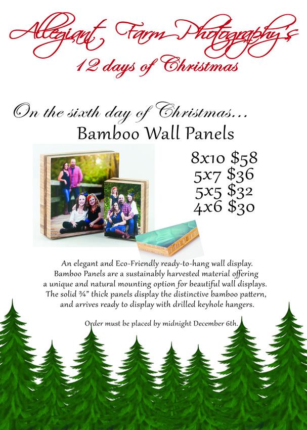 12 days of christmas specials-06
