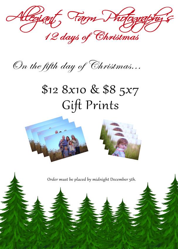 12 days of christmas specials-05