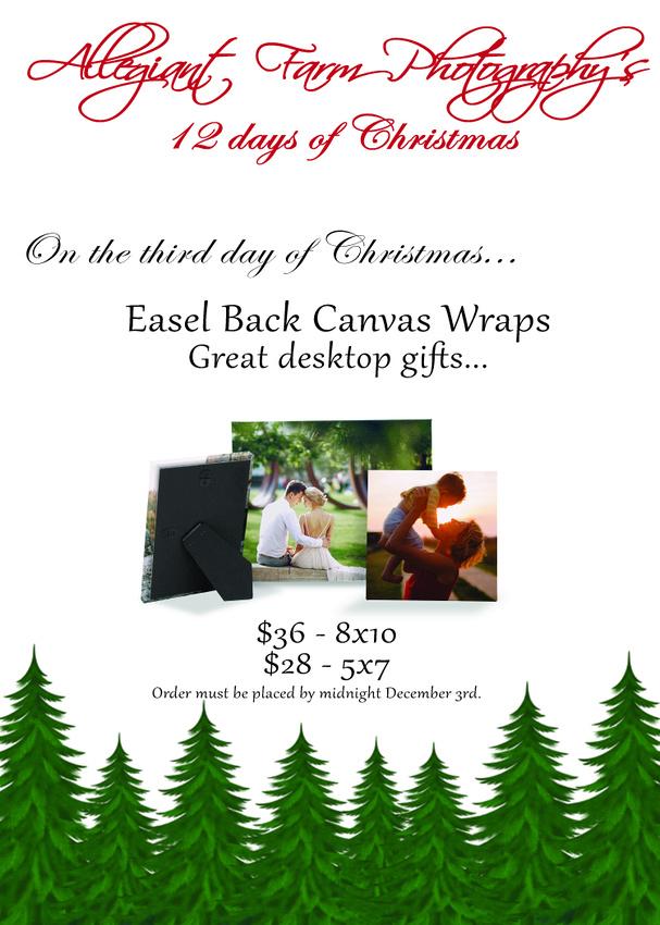 12 days of christmas specials-03